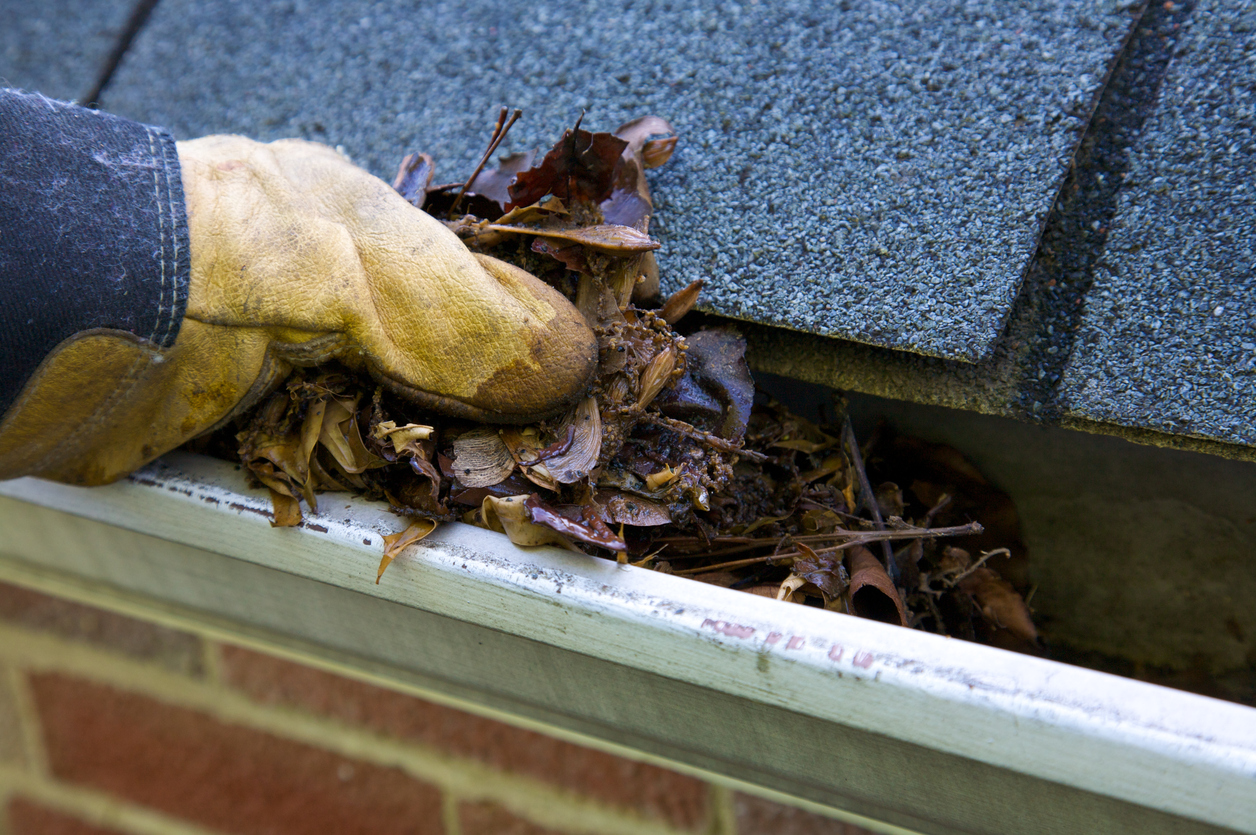 A Guide for Cleaning Your Home's Gutters
