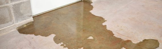 There's Water in my Basement. What Should I Do?